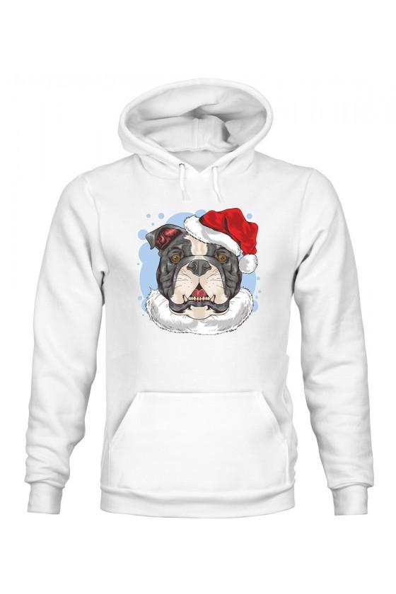 Bluza Damska z Kapturem Świąteczny Pies