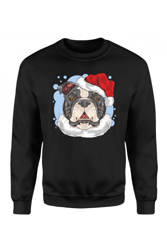 Bluza Męska Klasyczna Świąteczny Pies